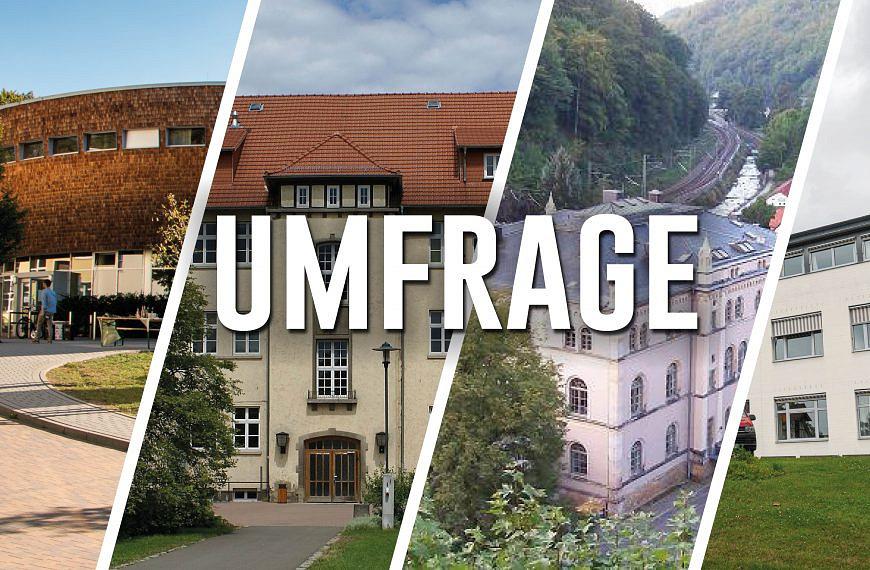 Freising, Rottenburg, Eberswalde, Erfurt, Göttingen, Dresden – Das sagen Studierende über ihr Forststudium