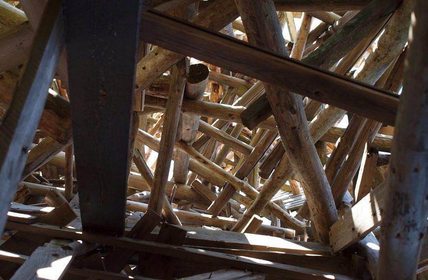 Ist Holznutzung Klimaschutz? – Was Holz alles kann